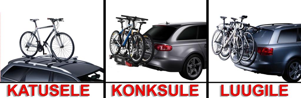 913e6b84add Tshop.ee - Kvaliteetsed Thule tooted Rootsist! Thule jalgrattahoidja ...